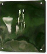 Water Drop Abstract Green 27 Acrylic Print