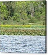 Water Landscape Acrylic Print