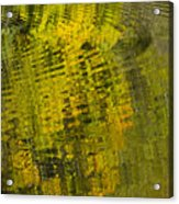 Water Reflection Abstract Autumn 1 D Acrylic Print