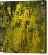 Water Reflection Abstract Autumn 1 E Acrylic Print