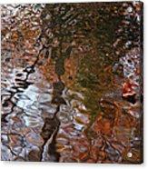 Water Serenade Acrylic Print