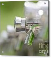 Water Taps Acrylic Print