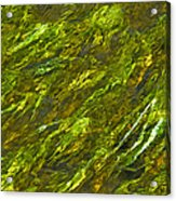 Water.4428 Acrylic Print