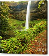 Waterfall Along The Trail Acrylic Print