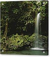 Waterfall And Emerald Pool In A Lush Acrylic Print