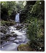 Waterfall In A Forest, Glenoe Acrylic Print