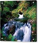 Waterfall In The Woods, Ireland Acrylic Print