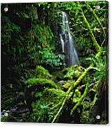 Waterfall, Sloughan Glen, Co Tyrone Acrylic Print
