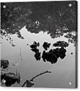 Watery Reflections Acrylic Print