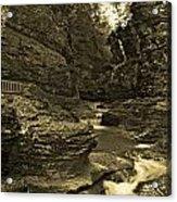 Watkins Glen In Orotone Acrylic Print