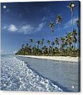 Waves Lapping Shore Of Beach With Palm Acrylic Print