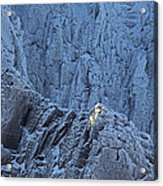 Weathered Granite Acrylic Print