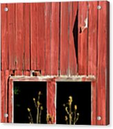 Weathered Red Barn Windows Of New Jersey Acrylic Print