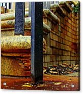 Weathering Heights  Acrylic Print by Tammy Cantrell
