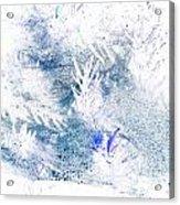 Web And Bush Abstract 2  Acrylic Print
