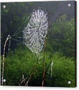 Web Over Foggy Lake Acrylic Print