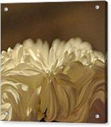 Wedding Star Acrylic Print