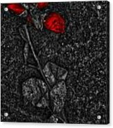 Weep Of A Rose  Acrylic Print
