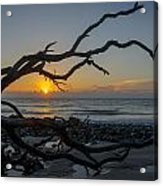 Welcome The Day Acrylic Print