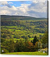 Wensleydale Near Westholme Bank In The Yorkshire Dales Acrylic Print