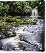 West Burton Falls Yorkshire Dales Uk Acrylic Print