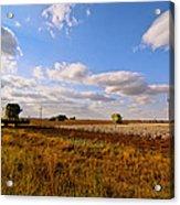 West Texas Cotton Harvest Acrylic Print