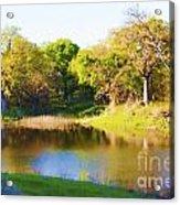 Wetland Serenity Acrylic Print