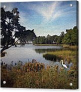 Wetlands - Oil Painting Effect Acrylic Print