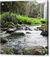Whangarei Falls In New Zealand Acrylic Print