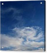 What's It All About Acrylic Print