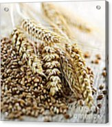 Wheat Ears And Grain Acrylic Print by Elena Elisseeva