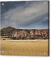 Wheatfield Zion National Park Acrylic Print