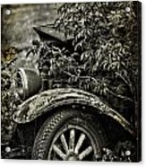 Wheels And Roots  Acrylic Print