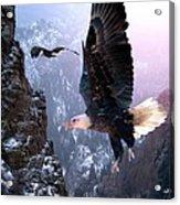 Where Eagles Dare Acrylic Print