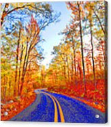 Where The Road Snakes Acrylic Print by Douglas Barnard