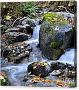 Whisketown Stream In Autumn Acrylic Print