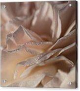 Whisper Sweet Nothings Acrylic Print