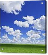White Clouds In The Sky And Green Meadow Acrylic Print