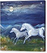 White Horses In Moonlight Acrylic Print by Maureen Ida Farley