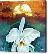 White Life On Blue Planet Acrylic Print