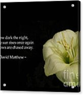 White Lily In The Dark Inspirational Acrylic Print