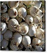 White Onions Acrylic Print
