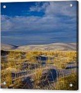 White Sands Golden Grass Acrylic Print