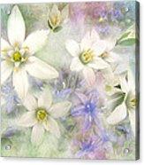 White Stars II Acrylic Print