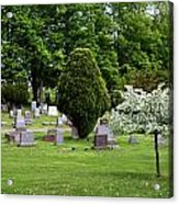 White Tree In Cemetery Acrylic Print