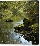 Whitewater River Spring 11 Acrylic Print