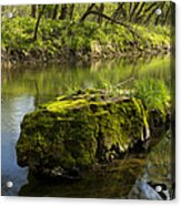 Whitewater River Spring 12 Acrylic Print