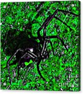 Wicked Widow - Green Acrylic Print