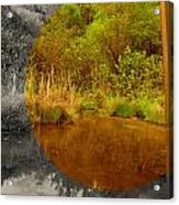 Wide View Focus Acrylic Print