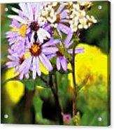 Wild Floral Acrylic Print